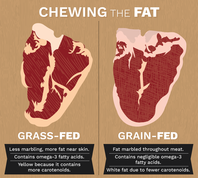 chewing-fat